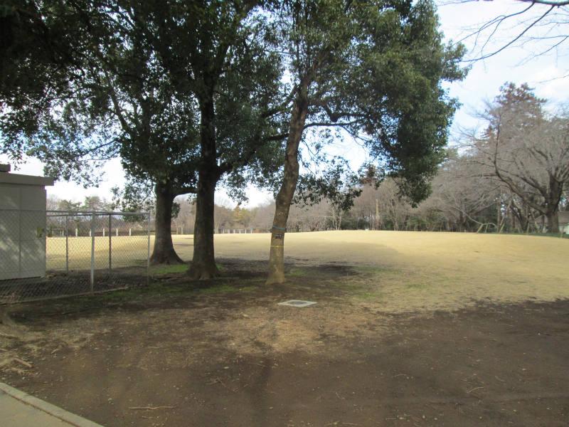 深谷市 農林公園食堂 咲楽屋
