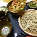 【熊谷】妻沼「庵」のもりそばとミニかき揚げ丼と黒ごまプリンがうまい!