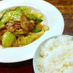 太田市龍舞町の関琳で中華ランチ。回鍋肉と豚バラ酢豚定食を喰らう。